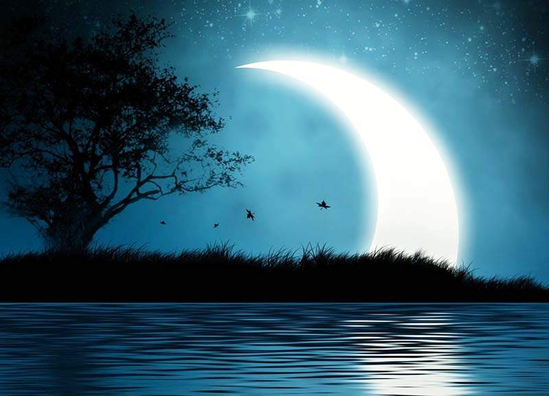 295 Лунный календарь и сны