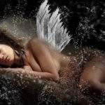 649 Сонник, толкование снов