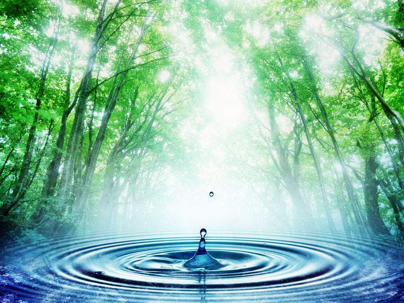 Снится Вода