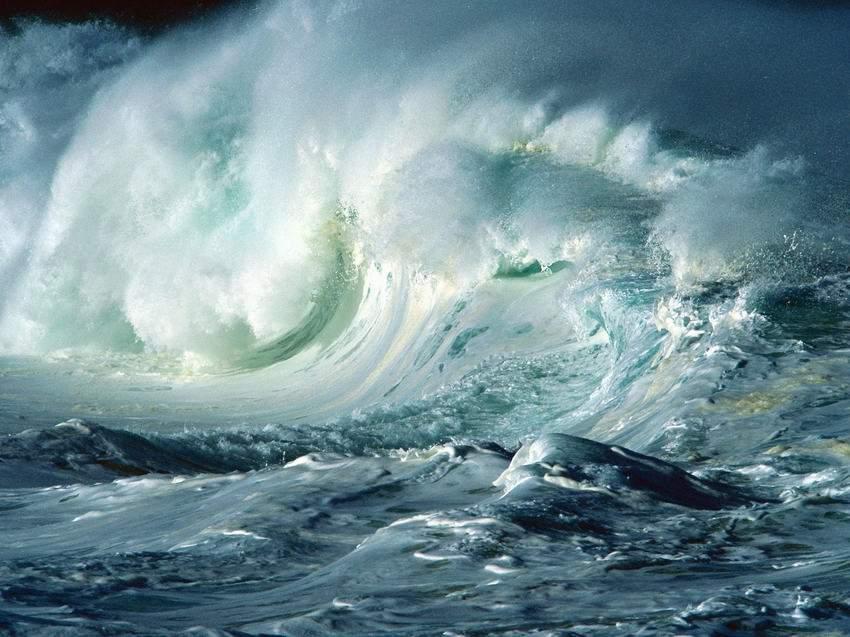 Снится Волна