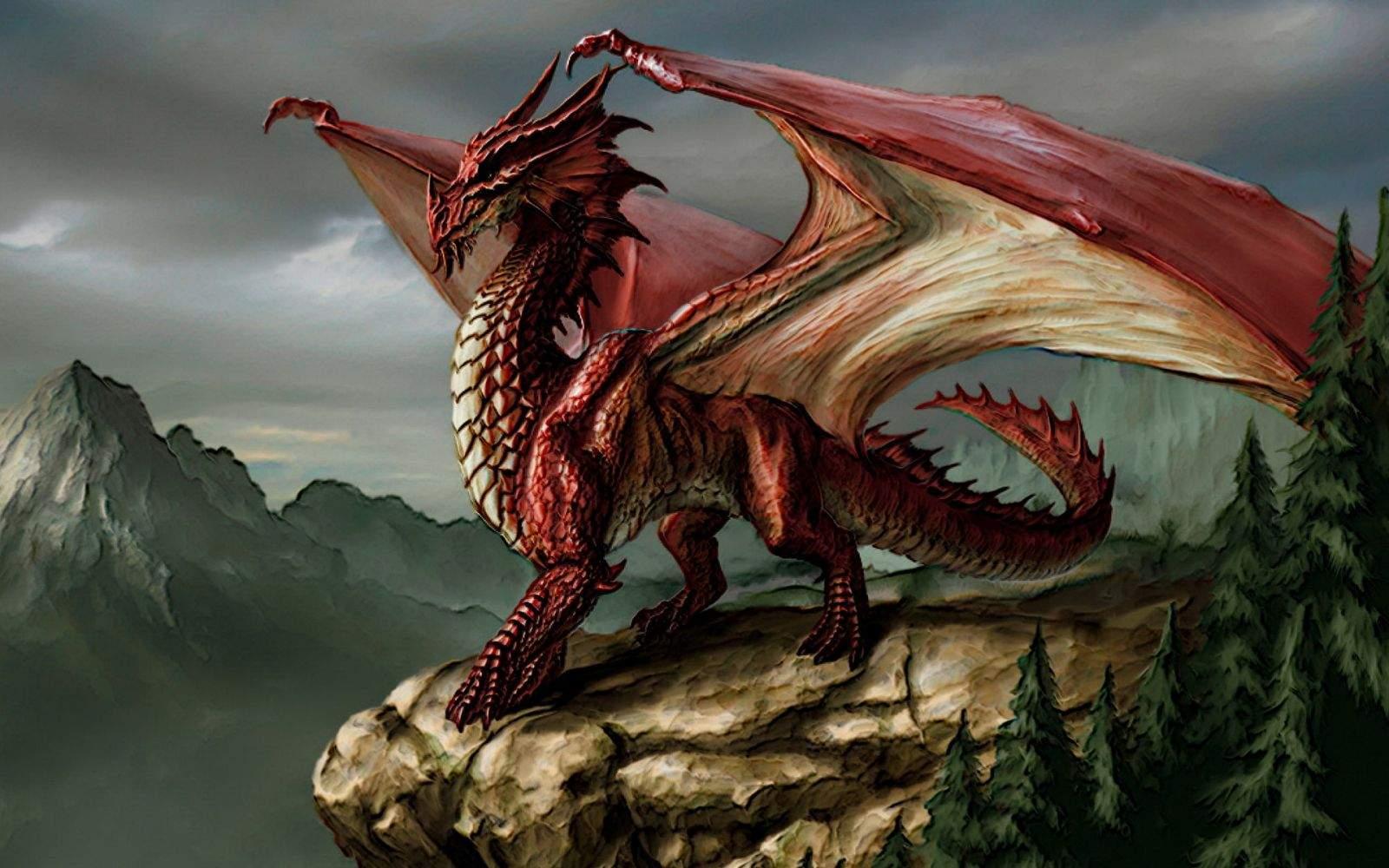 Снится Дракон
