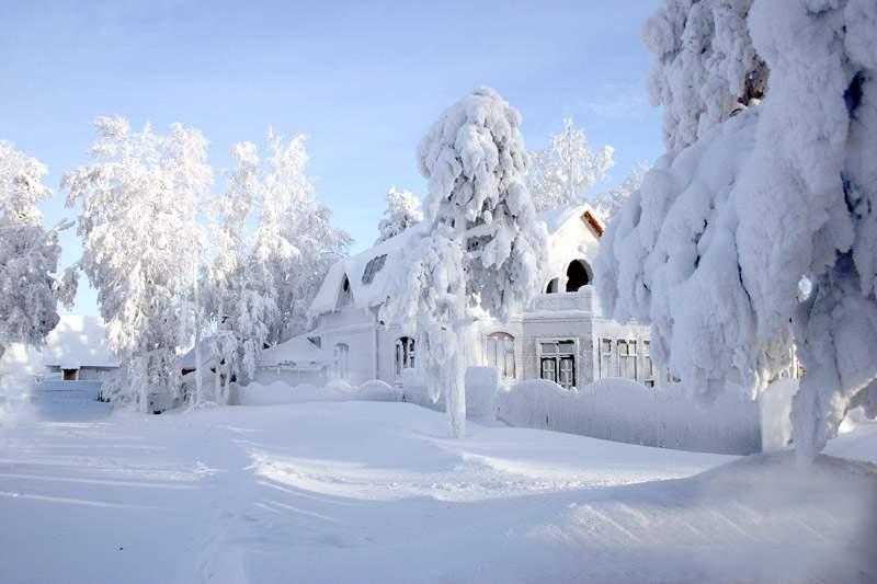 Снится Зима