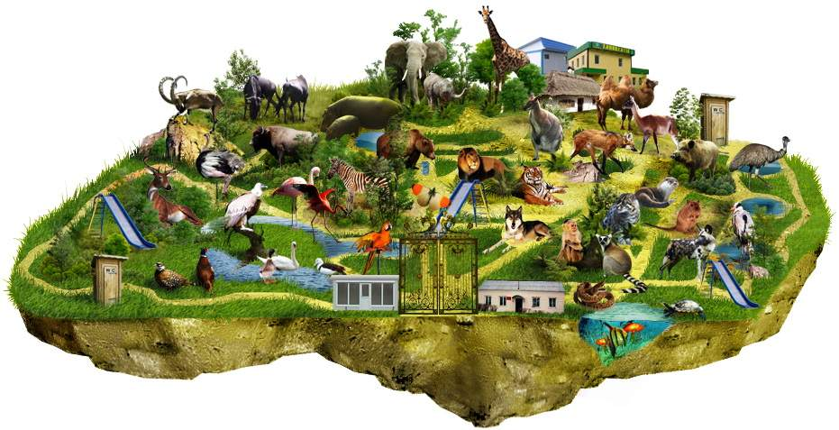 Снится Зоопарк