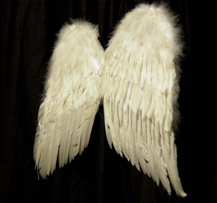 Снятся Крылья