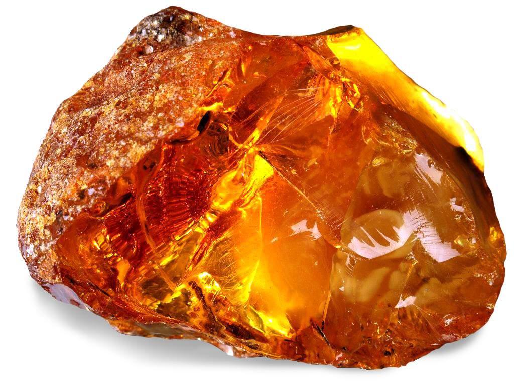 Камень талисман Льва, Янтарь