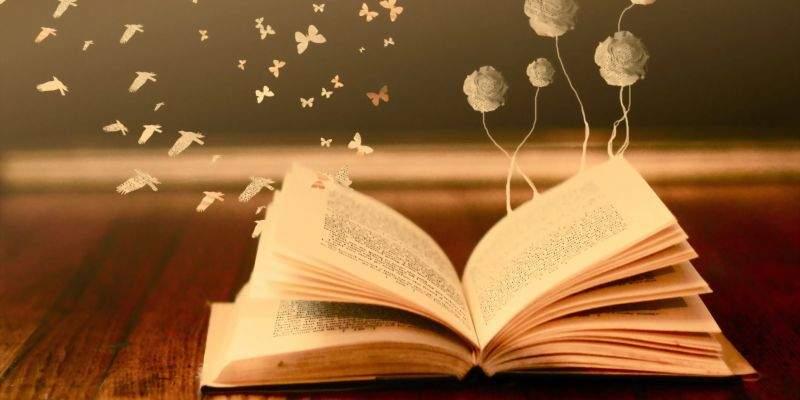 Снится Чтение