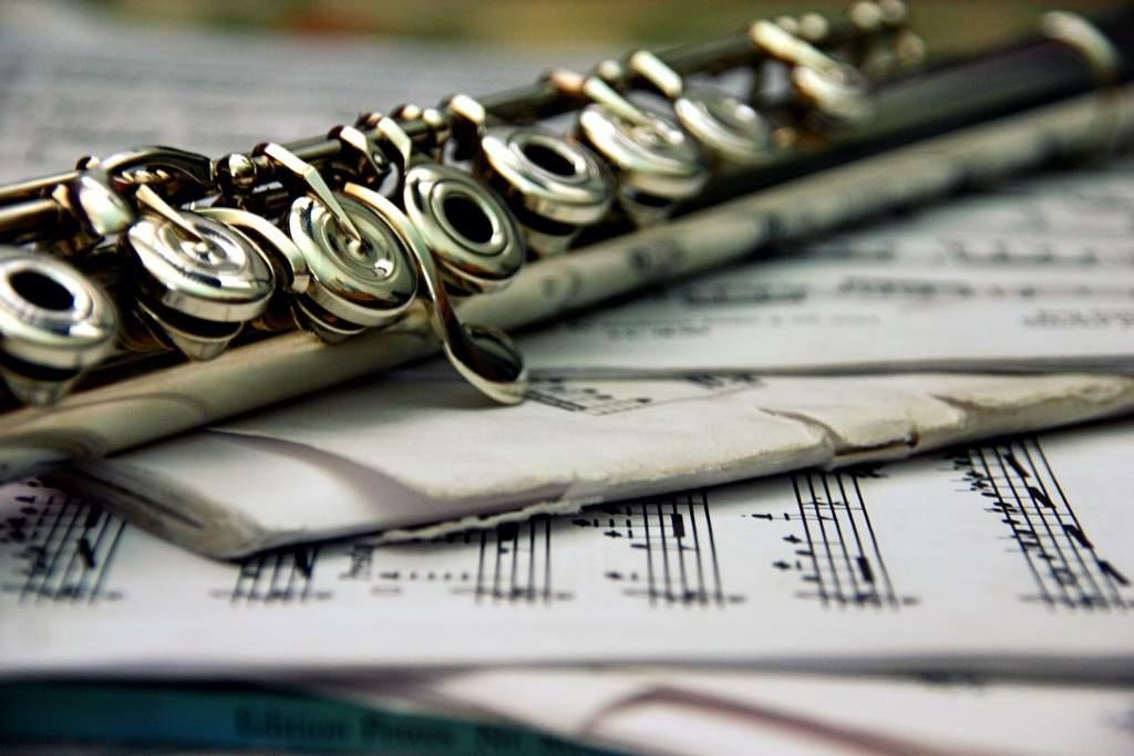 6531 Снится Флейта