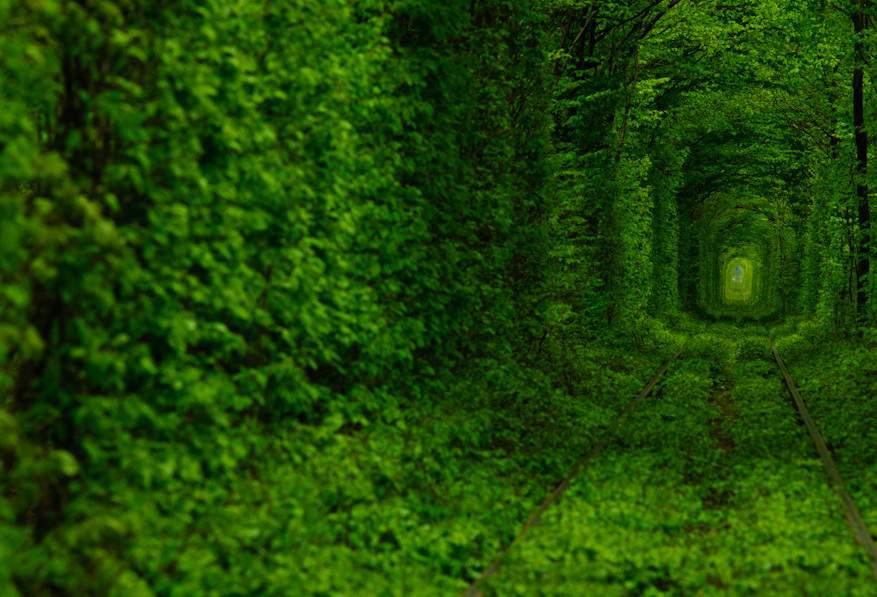 6938 Снится Тоннель