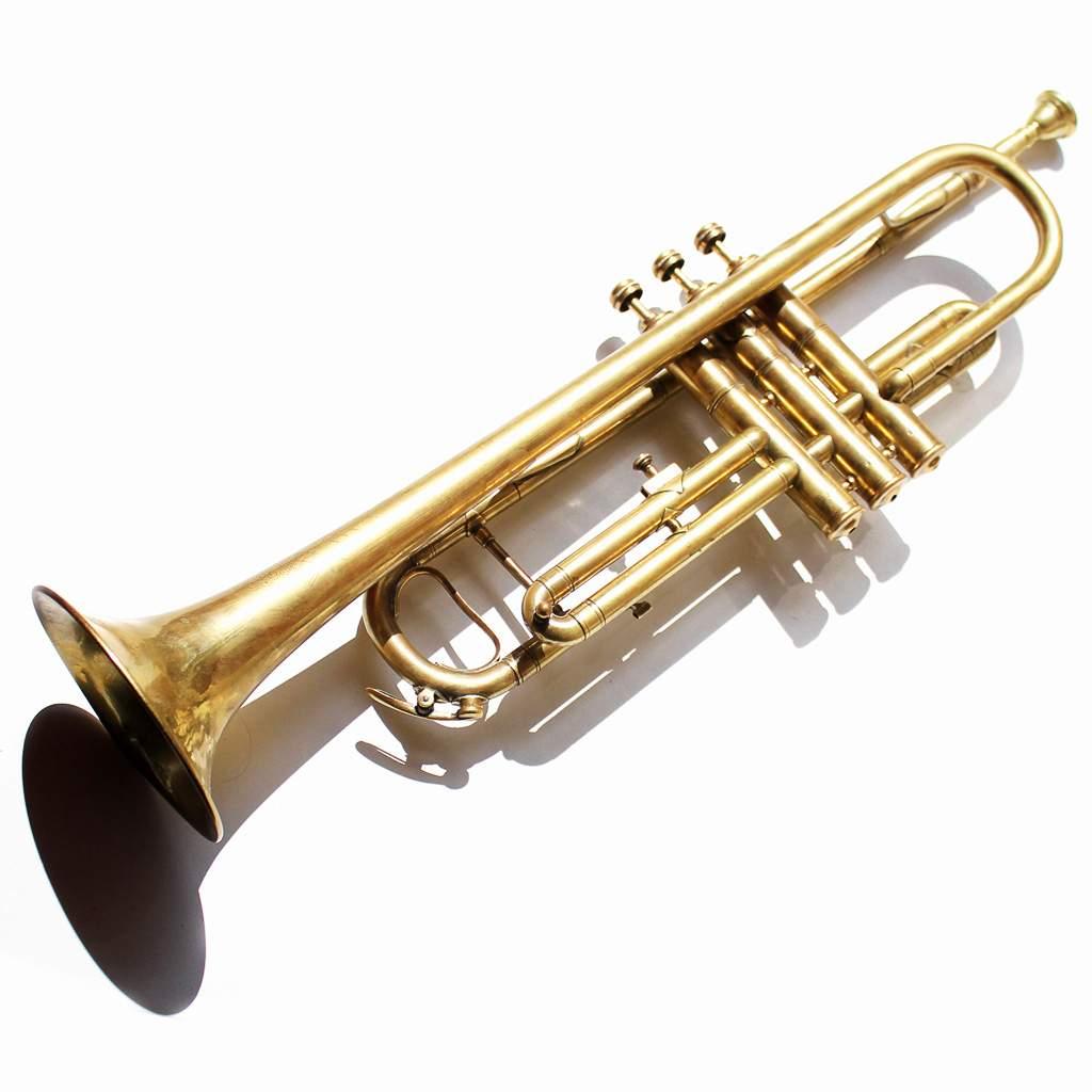 Снится Музыкальная Труба
