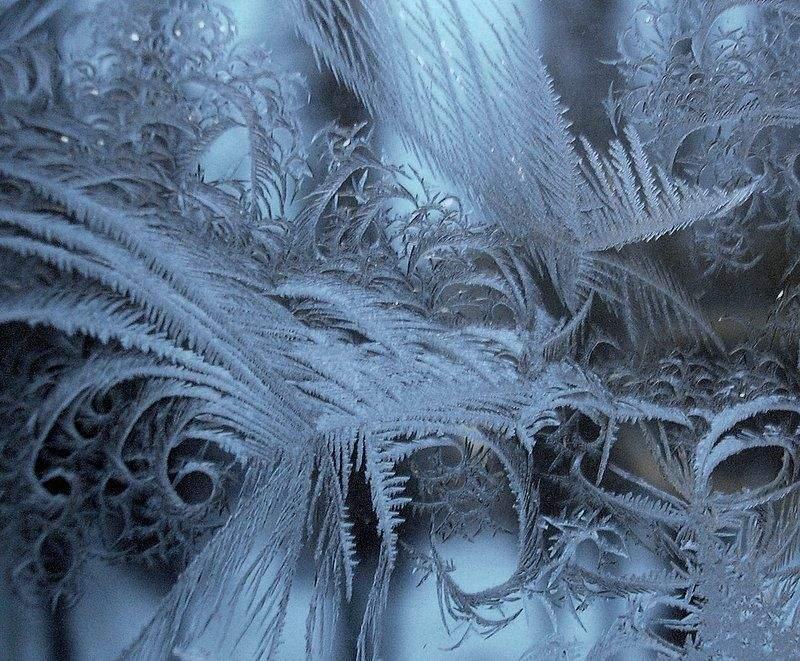 8167 Мороз