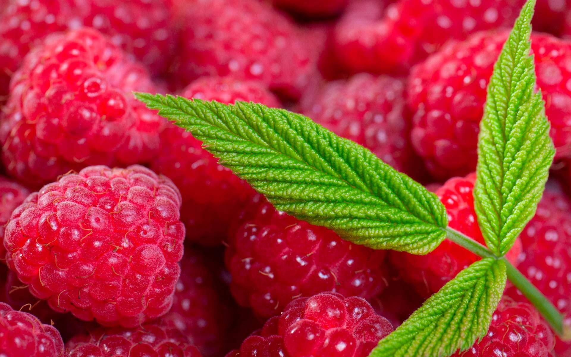 Летние гадания на фруктах