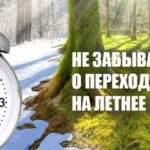 11245 Перевести