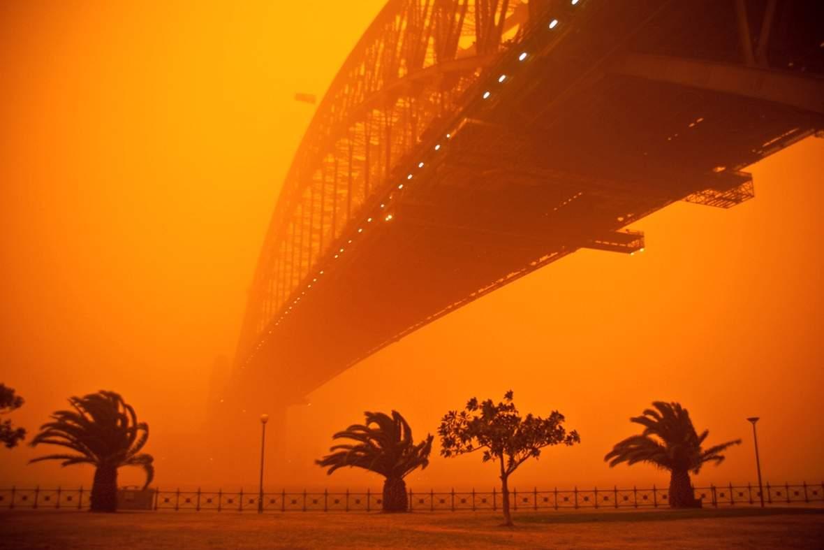 11654 Песчаная буря