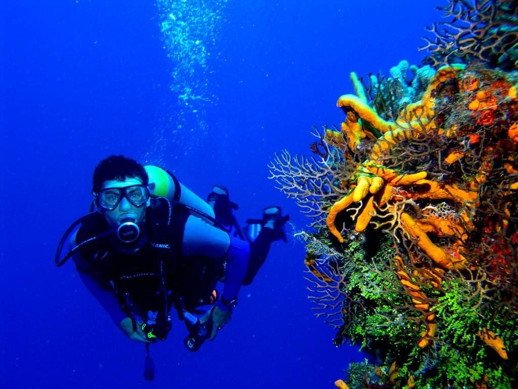 11826 Подводное плавание