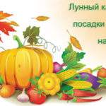 12516 Лунный посевной календарь на февраль 2016 года