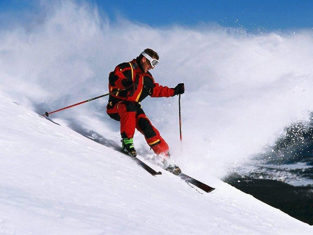 12730 Лыжа