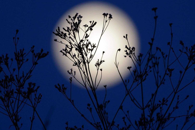 Лунный календарь снов 14 — 30 апреля 2016