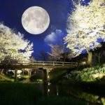 13371 Лунный календарь снов 17 - 31 октября 2016