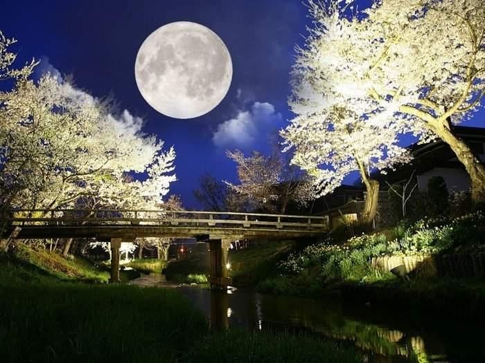 Лунный календарь снов 17 — 31 октября 2016