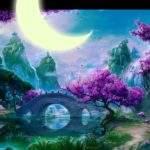 Лунный календарь снов 1 - 16 ноября 2016