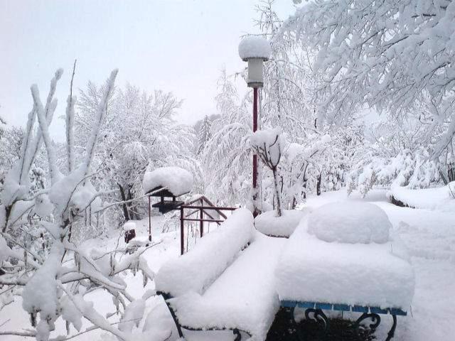 Гороскоп на декабрь 2017 года Овен