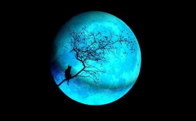 Лунный календарь снов 18 — 31 января 2017