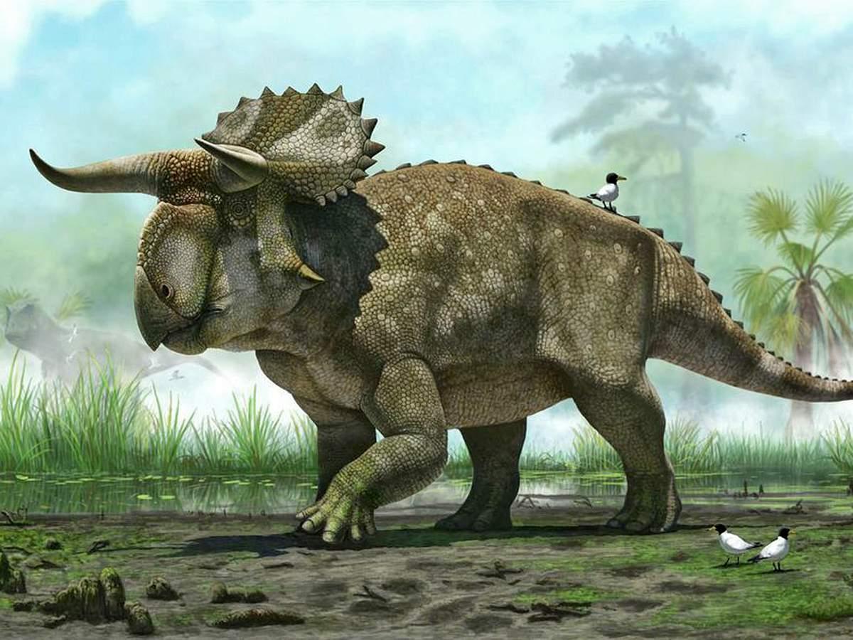 Снится Динозавр