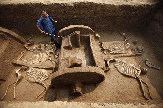 Снится Археолог