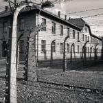 19591 Снится Концентрационный лагерь