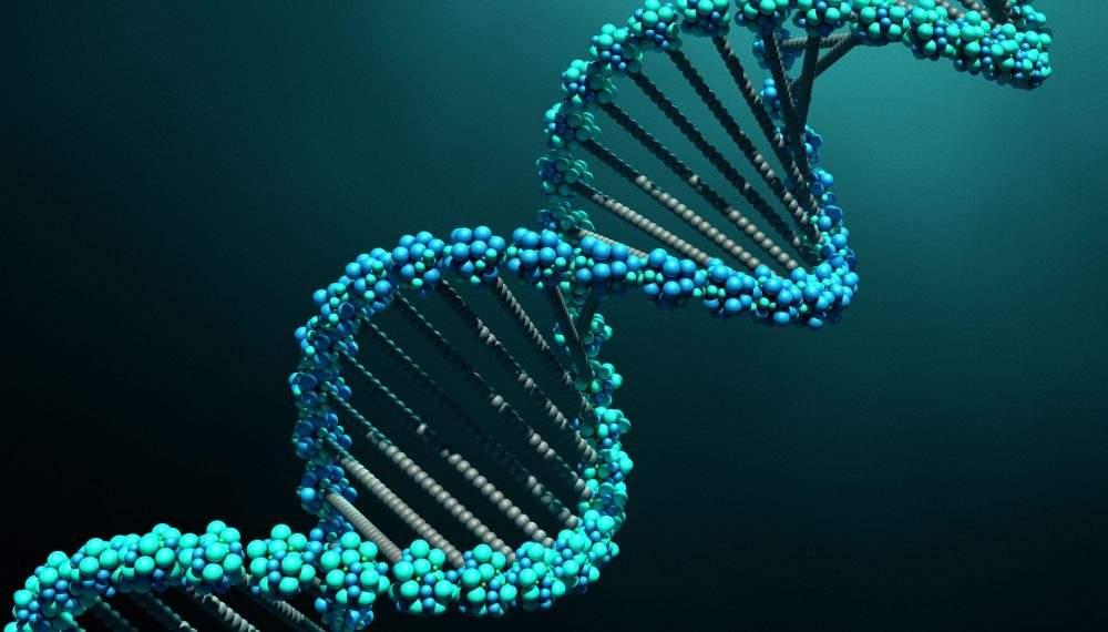Снится ДНК