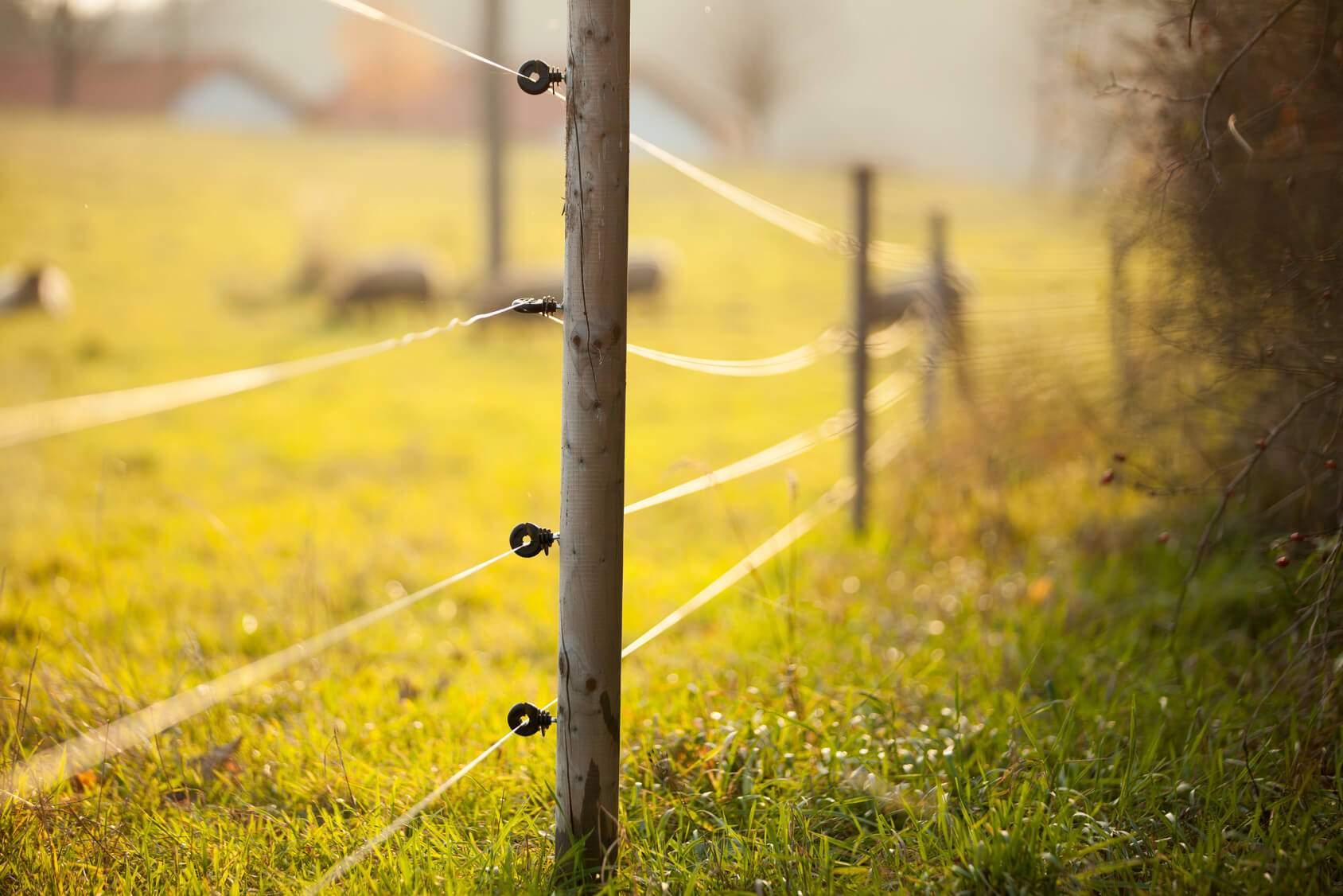 Снится Электрический забор