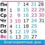 20533 Козерог гороскоп на декабрь 2020 года