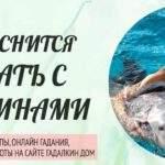20878 К чему снится плавать с дельфинами: толкование значения сна по различным сонникам для мужчин и женщин