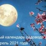 21214 Гороскоп на 6 октября 2020 года. Луна сегодня 6.10.2020