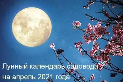 21214 Лунный календарь садовода и огородника на апрель 2021 года
