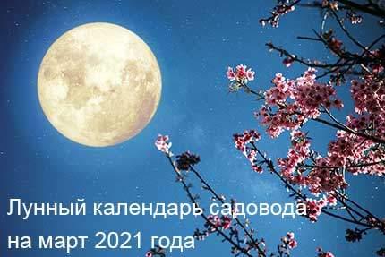 21102 Лунный календарь садовода и огородника на март 2021 года