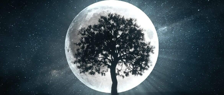 21243 Гороскоп на 10 октября 2020 года. Луна сегодня 10.10.2020