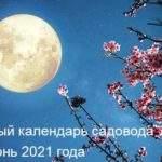 21385 Лунный календарь стрижек на июнь 2021