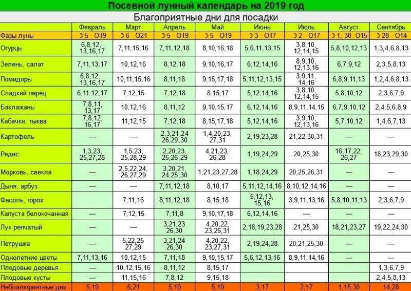 Лунный календарь садовода — огородника на 4 июля 2021 года