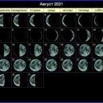 21606 Лунный календарь стрижек на август 2021