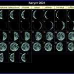 21606 Лунный календарь садовода и огородника на август 2021 года