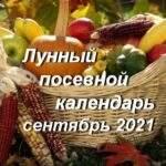 21863 Гороскоп на неделю с 22 по 28 февраля 2021 года
