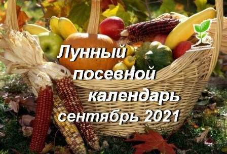 21863 Лунный календарь садовода и огородника на сентябрь 2021 года