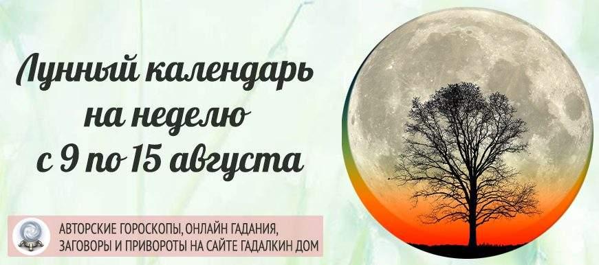 22401 Лунный календарь на неделю с 9 по 15 августа: благоприятные и неблагоприятные дни