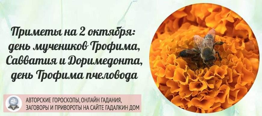 23126 Приметы на 2 октября: день мучеников Трофима, Савватия и Доримедонта, день иеросхимонаха Алексия, день Трофима пчеловода