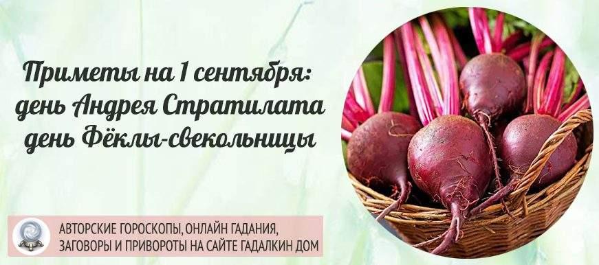Традиции и приметы на 1 сентября: день Андрея Стратилата или Фёкла-Свекольница
