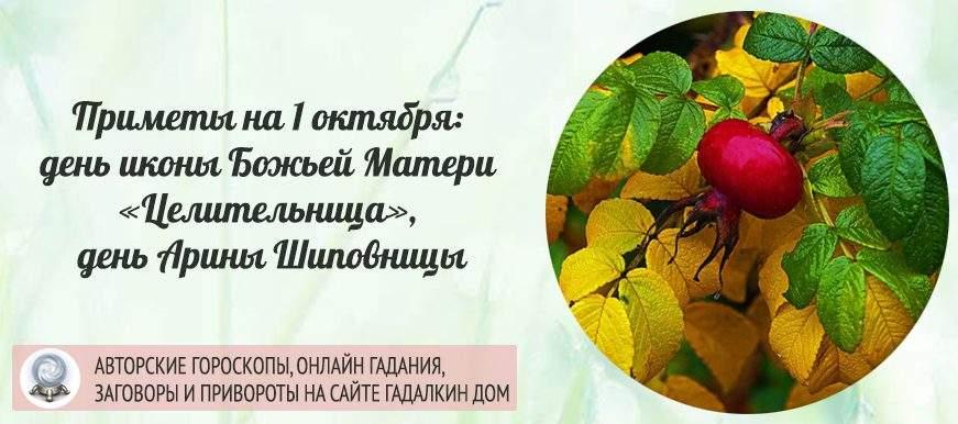 23146 Приметы на 1 октября: день иконы Божьей Матери «Целительница», день святой Ариадны, день Арины Шиповницы